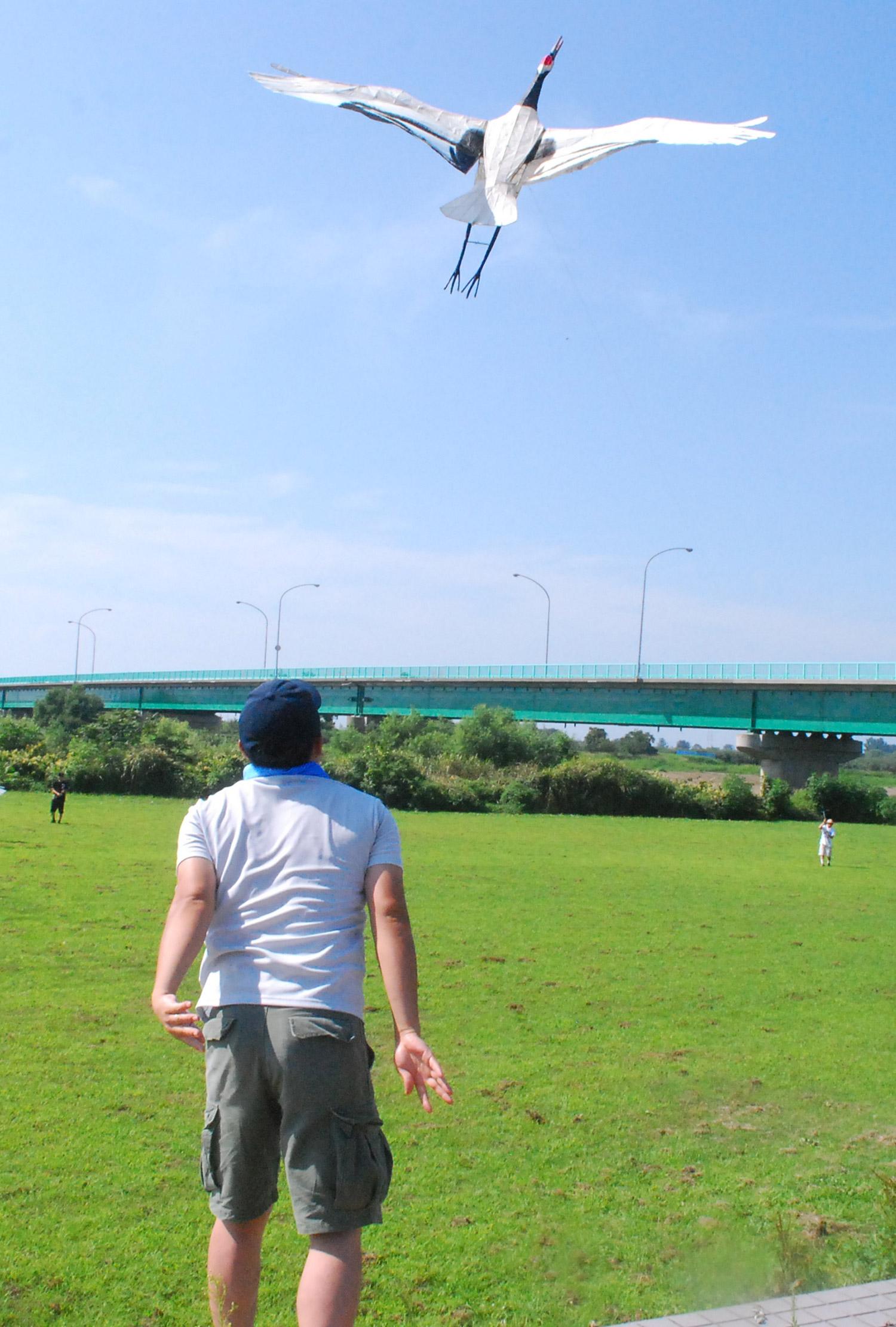 Crane kites flying festival
