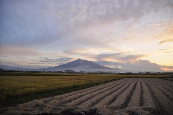Mt. Iwaki and paddy fields after harvest