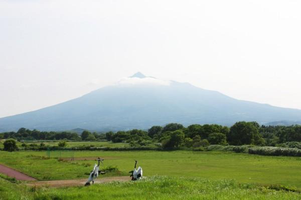 Mt. Iwaki from Sakura Zutsumi Park