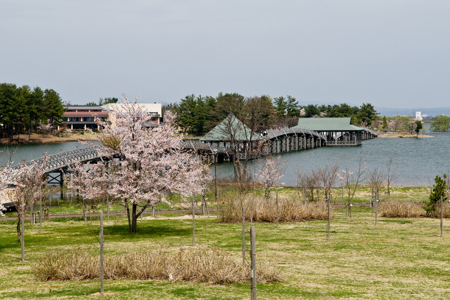 Take from Fujimi Lake Park to Crane Nature Park Tsuru no Mai Bridge