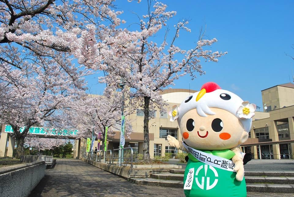 the official Tsuruta town mascot Tsururin